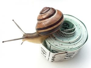 Snail on Tape Measure
